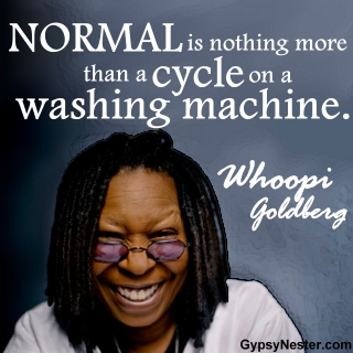 Normal is nothing more than a cycle on a washing machine. -Whoopi Goldberg