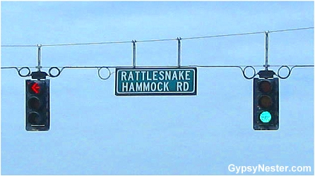 Rattlesnake Hammock Road in Naples, Florida
