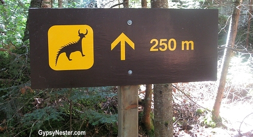 Sign leading to the pictographs by Ojibway in Ontario's Provincial Park