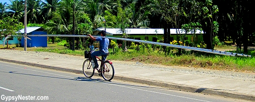 Palm plantation harvesters carry their poles and sharp scythes on bikes