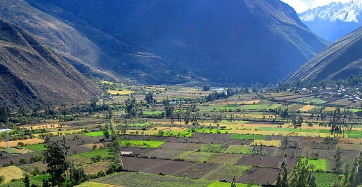 Farming in The Sacred Valley, Peru