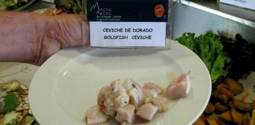Goldfish Cerviche in Peru