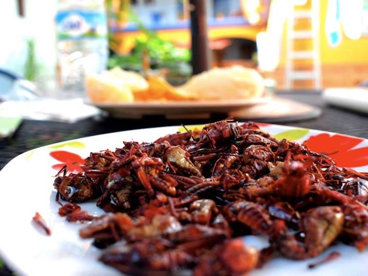 Chapulines - grasshoppers with chile and garlic from Lunaguava