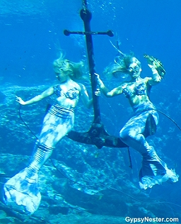 The mermaids of Weeki Wachee Springs, Florida