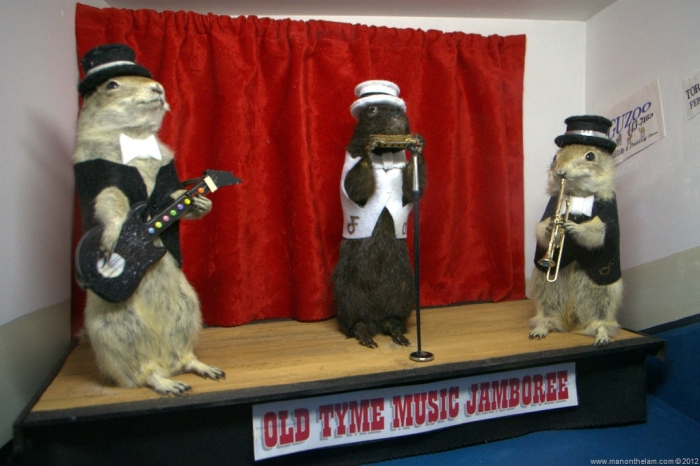Old Tyme Music Gophers by Ramond of Man On The Lam