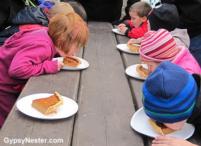 Kids pie eating contest at the Sycamore Pumpkin Fest - SO cute!