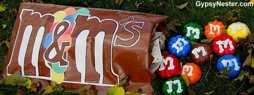 M&M Pumpkins at the Sycamore Pumpkin Fest in Illinois
