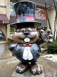 Punxutawney Phil in Top Hat