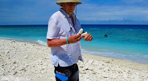 The coral beach on Lady Elliot Island in Queensland, Australia