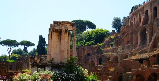 The Forum in Rome, Italy