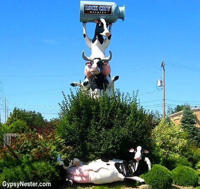 Fiberglass cow pile!