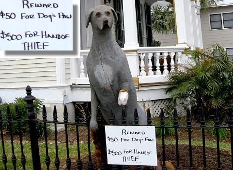 Reward for missing dog paw