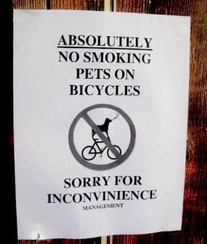 No smoking pets on bicycles