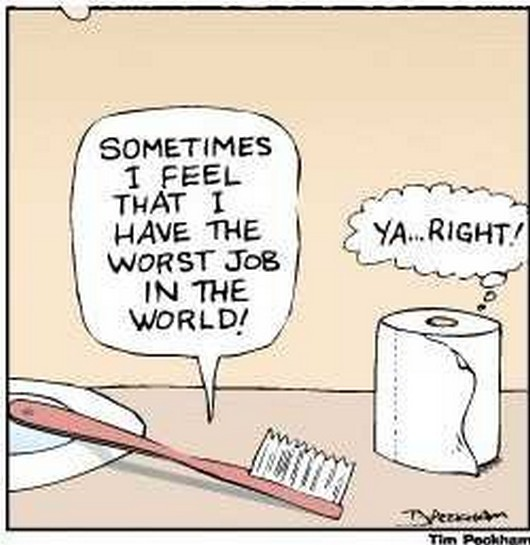 Hahaha! And you thought YOUR job was bad!