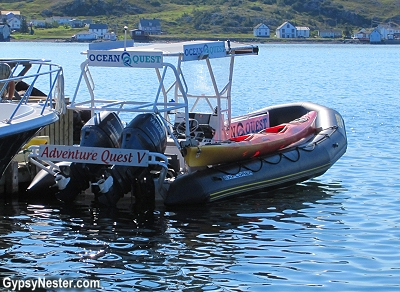 The boat that we took to go whale watching in Newfoundland