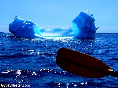 Kayaking with icebergs in Twillingate, Newfoundland