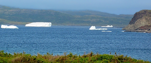 Icebergs at the northern tip of Newfoundland