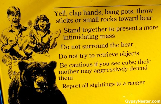 You mean bears aren't cute and friendly like Smokey?