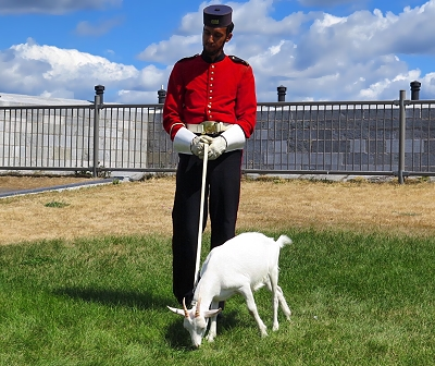 Fort Henry's mascot, David. In Kingston, Ontario, Canada