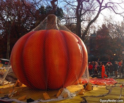 macys thanksgiving pumpkin